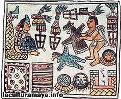 caracteristicas de la agricultura maya