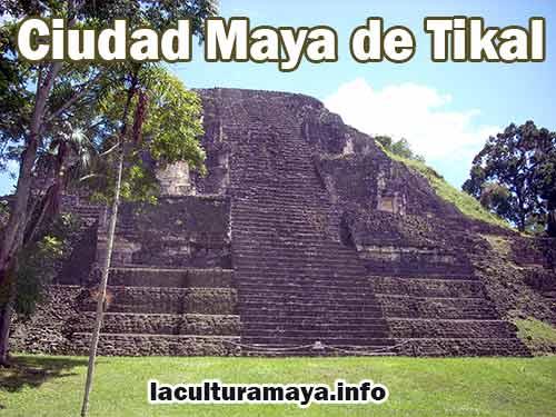 como era la organizacion politica de los mayas