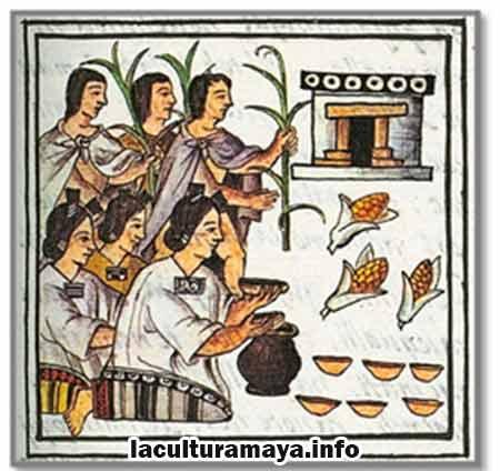 caracteristicas de la alimentacion de los mayas